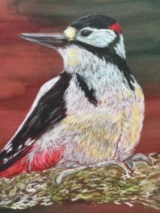Woodpecker (credit: Judith Ramczyk)