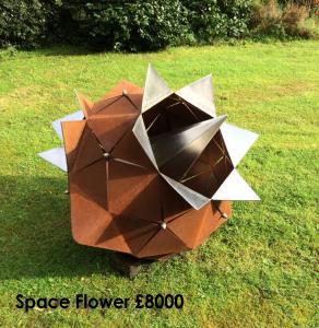 Space Flower - Joanne Risley