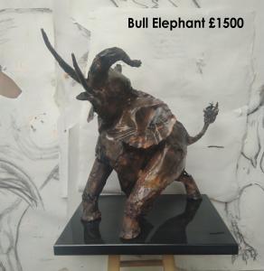Bull Elephant - Tony Evans