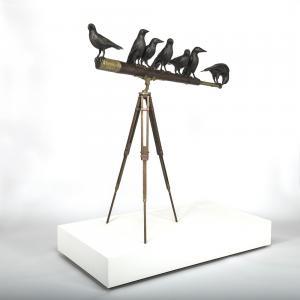 The Birds - Martin Norman