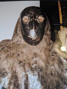 Medieval plague mask.