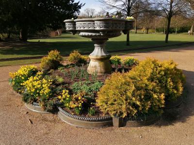 Floral display (credit: Mark P Henderson)