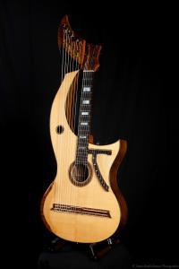 The amazing 'Harp-Guitar' (Jon Pickard)